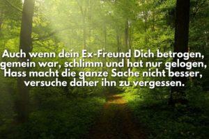 Ex-Freund hassen Sprüche » sprueche.co