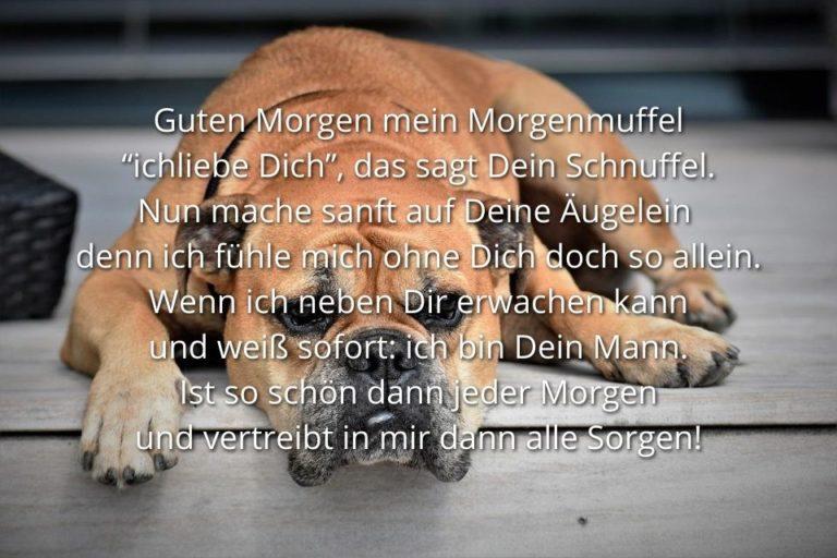 Guten Morgen mein Schatz Sprüche und Gedichte » sprueche.co