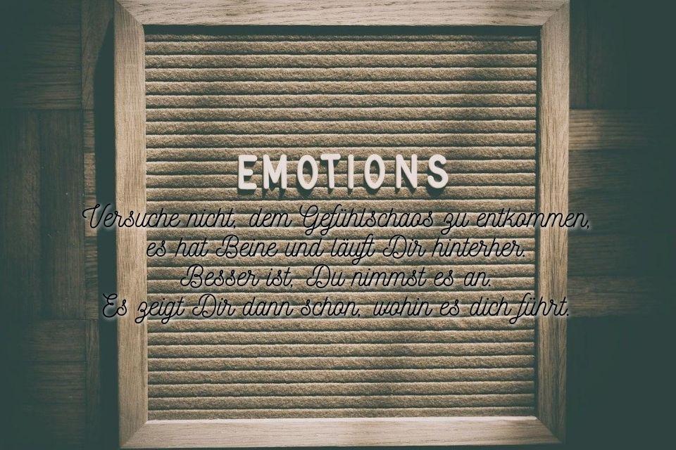 Schöner Spruch über Gefühle