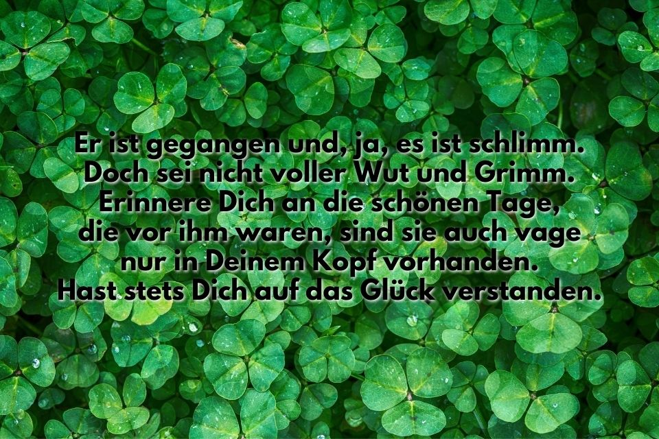 Spruch Bild Glueck Kleeblatt
