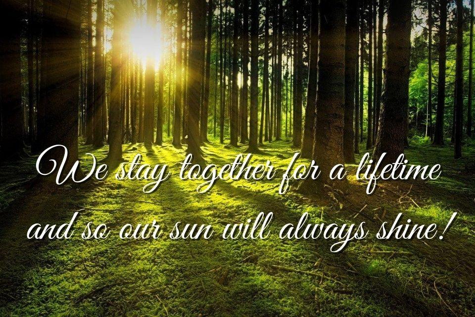 Englischer Spruch zum Nachdenken mit Wald-Hintergrund