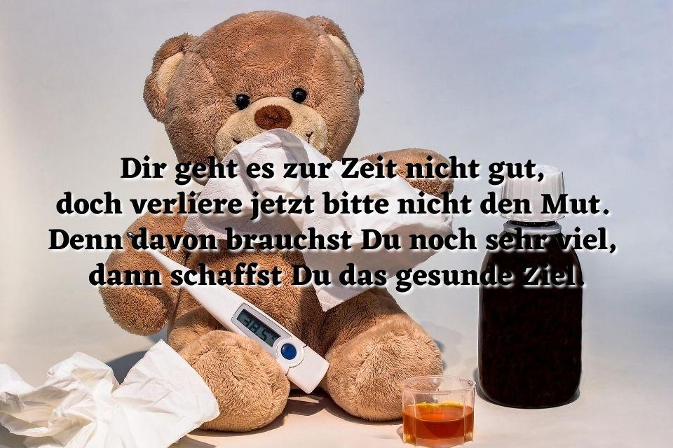 Bild Text krank gesund Teddy