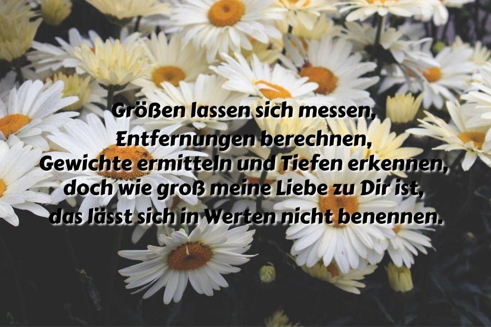 Bild mit Spruch Liebe Zuneigung Blumen